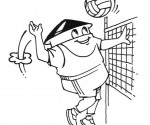 Frederikshavn Volleyboldklub